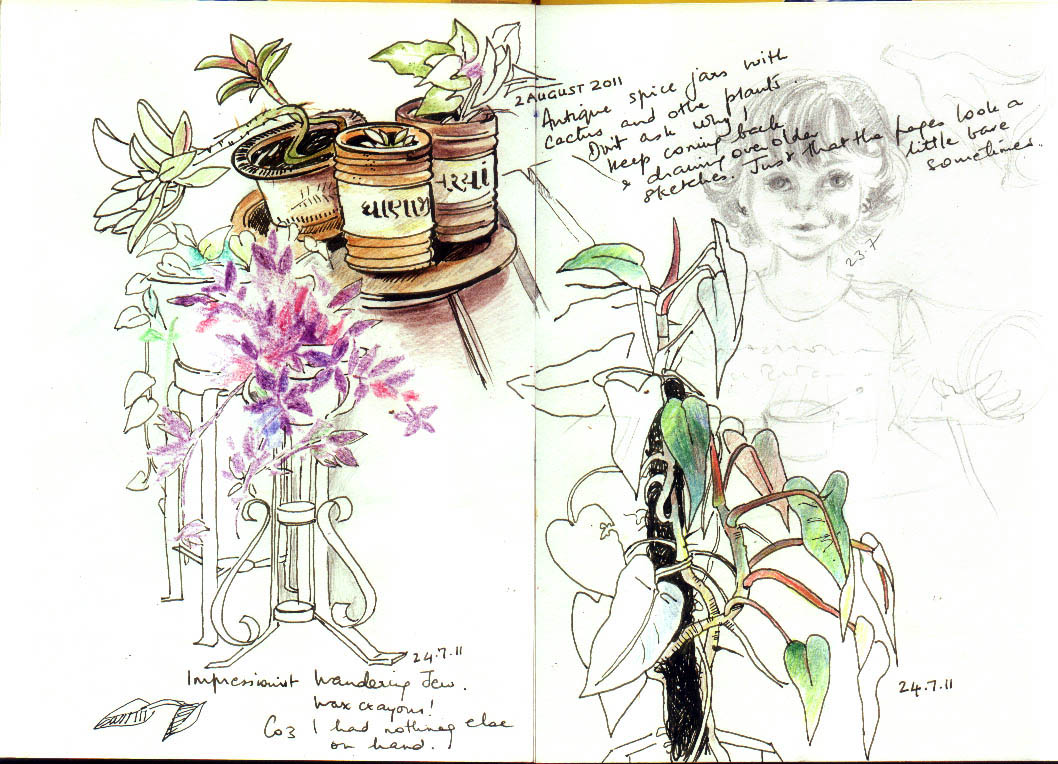 sketches - plants